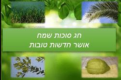 סוכות שמח ברכה עם תמונות ארבעת המינים